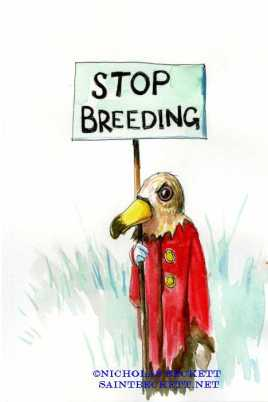 stop breeding dodo